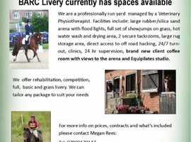 LIVERY VACANCIES in West Berkshire