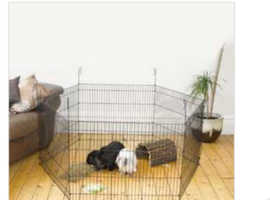 Guinea pig cage and pen