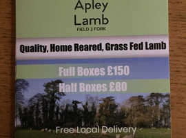 Fresh Lamb Meat Boxes