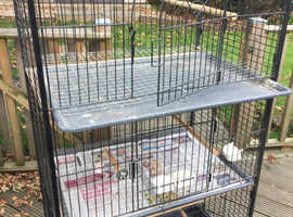 Large indoor aviary / block of three cages.