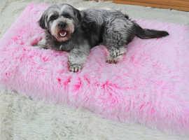Delux Orthopedic dog bed