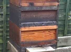 'Honey Bees' Full colony of Bees includes the hive.