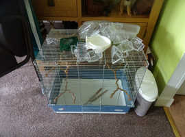 new budgie or canary cage