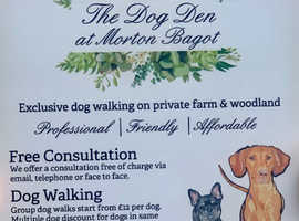 Dog Walking on private Farm and Woodland