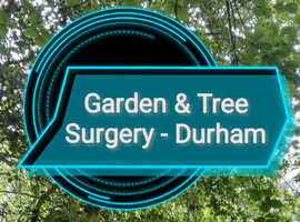 Experienced Gardener and Tree Surgeon