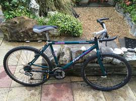Men's serviced retro rigid mountain bike