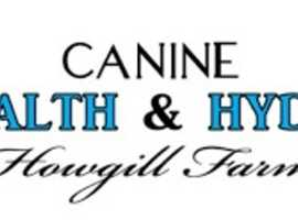 The largest Canine Rehabilitation Centre in the North