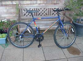 Universal 'Highway Patrol' Mountain Bike