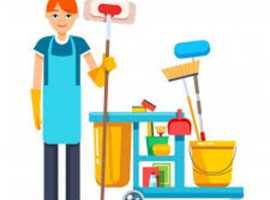Miss Sparkle Swansea - Domestic Diamond Professional Home Cleaning Service