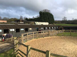 Livery available in surrey