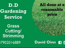 Grass Cutting/ strimming