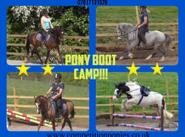 Pony Boot Camp