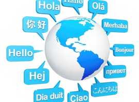 Experienced Freelance Translator