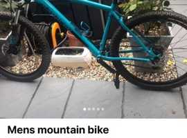 19' frame men's mountain bike