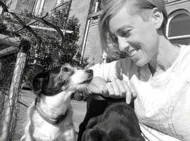 Dog Trainer and Behaviourist Glasgow