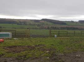Sole use yard or fields