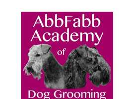 Customised and Affordable God Grooming Courses in UK