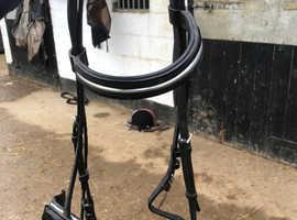 Black Pony Bridle