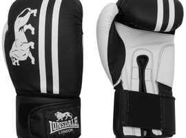 Buy Best Boxing Gloves