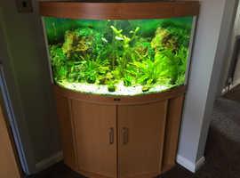 Jewel Corner Fish Tank / Cabinet