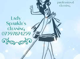 Lady sparkles cleaning service to the rescue