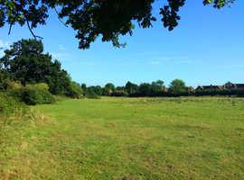 WANTED Field / grazing land