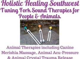 Canine Massage Therapist. I also offer Animal Therapies including Reiki, Tuning Fork Sound Therapy,  Acupressure, Crystal Healing Emotional/Physical