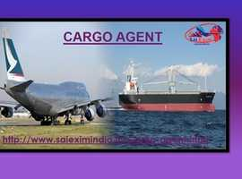 Choose Your Cargo Agent Now