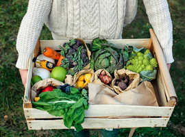NOW DELIVERING FRUIT & VEG BOXES ACROSS DORSET!