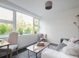 Magnificent one bedroom flat to rent.