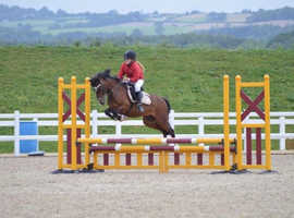 **potential top track jumping pony**