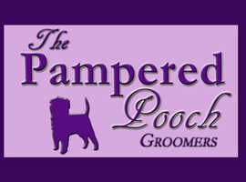 The Pampered Pooch Dog Groomers