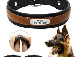 Luxury Collar Dogs