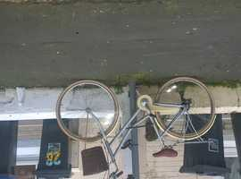 BICYCLE FOUND ON GRATWICKE ROAD