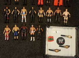 Various wwe figures