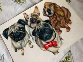 Custom Pet Portraits!