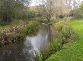 Fly Fishing on the River Meon **Back in the Spring**