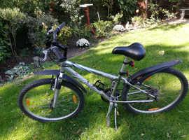 Silver giant mountain bike