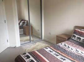 2 bedroom new build flat for rent