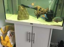 Fish tank!!
