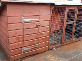 Well built Dog Kennel and Run