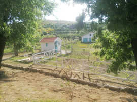 Beautiful place for sale in central Portugal