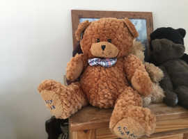 Brown Darcy bear with all tags