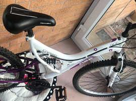 Women's mountain bike fully working order
