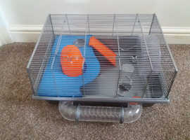 SINGLE or BUDNLE hamster cages