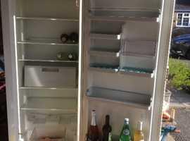 Bosch 6' larder fridge
