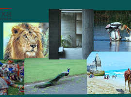 Travel Agency in Somnath