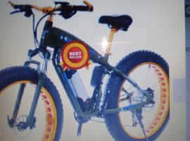 Electric fat bike New