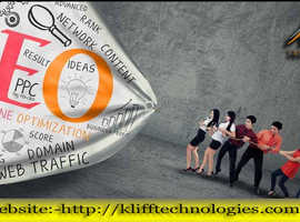 SEO Services in Hawke's Bay