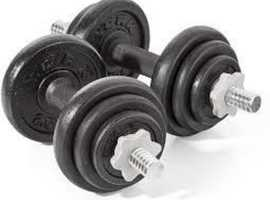 Free gym equipment - weights, dumbells and barbells